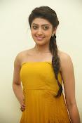 Pranitha latest dazzling pics-thumbnail-16