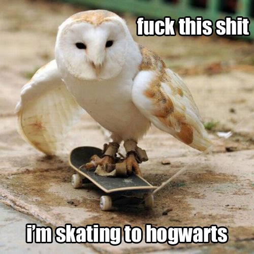 Fuck This Shit - I'm Skating To Hogwarts