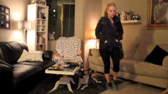 Video gracioso: ¿sabes lo que tu perro hace cuando tú no estás en casa?