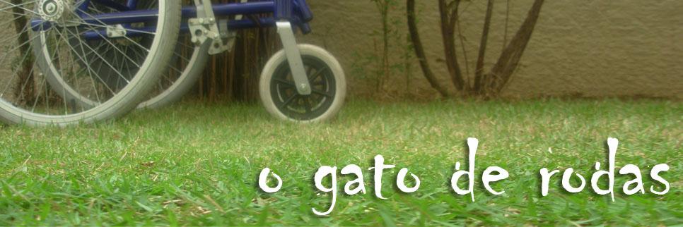 o gato de rodas
