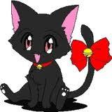 Cat's Shioo