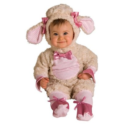 Cute little kid in Funny costume of lamb Free Download