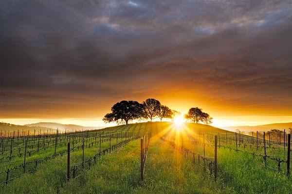 Beautiful sunrise - wish I had been there