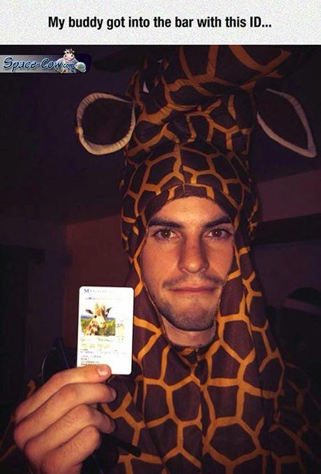funny costume giraffe picture