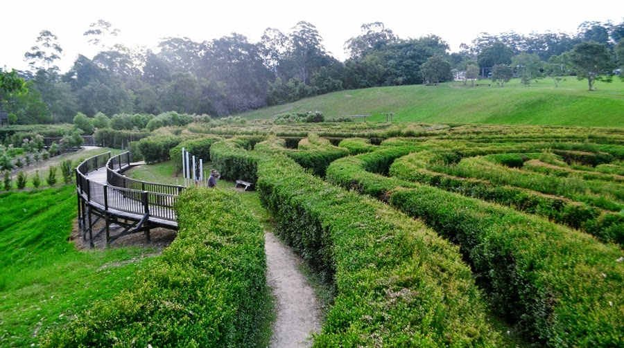 bago maze, vineyards, hedge maze, sydney