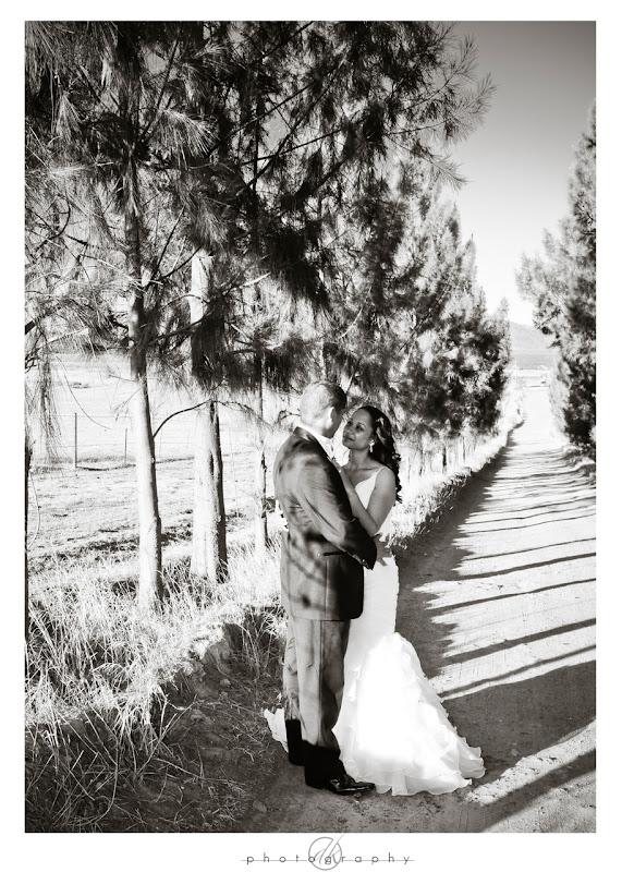 DK Photography Brwyn8 Bronwyn & Garth's Wedding in Paarl  Cape Town Wedding photographer