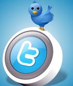 Siga a Déia no Twiter
