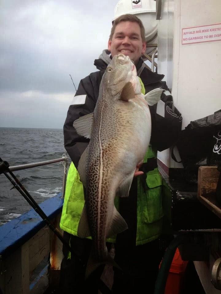 fisk i vandet Hvidovre