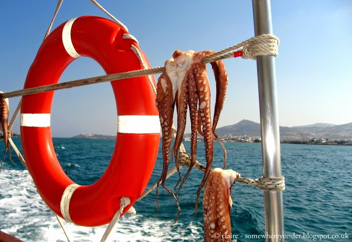 fresh squid, drying in the sun - Ios Greece 2011