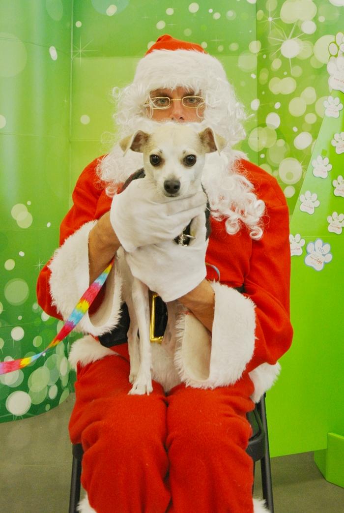 happyhazel: Happy Meets Santa for the First Time! - Happy