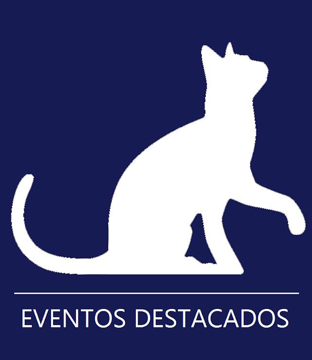 Más de 50 actividades todo el fin de semana: Agenda Cultural 2015