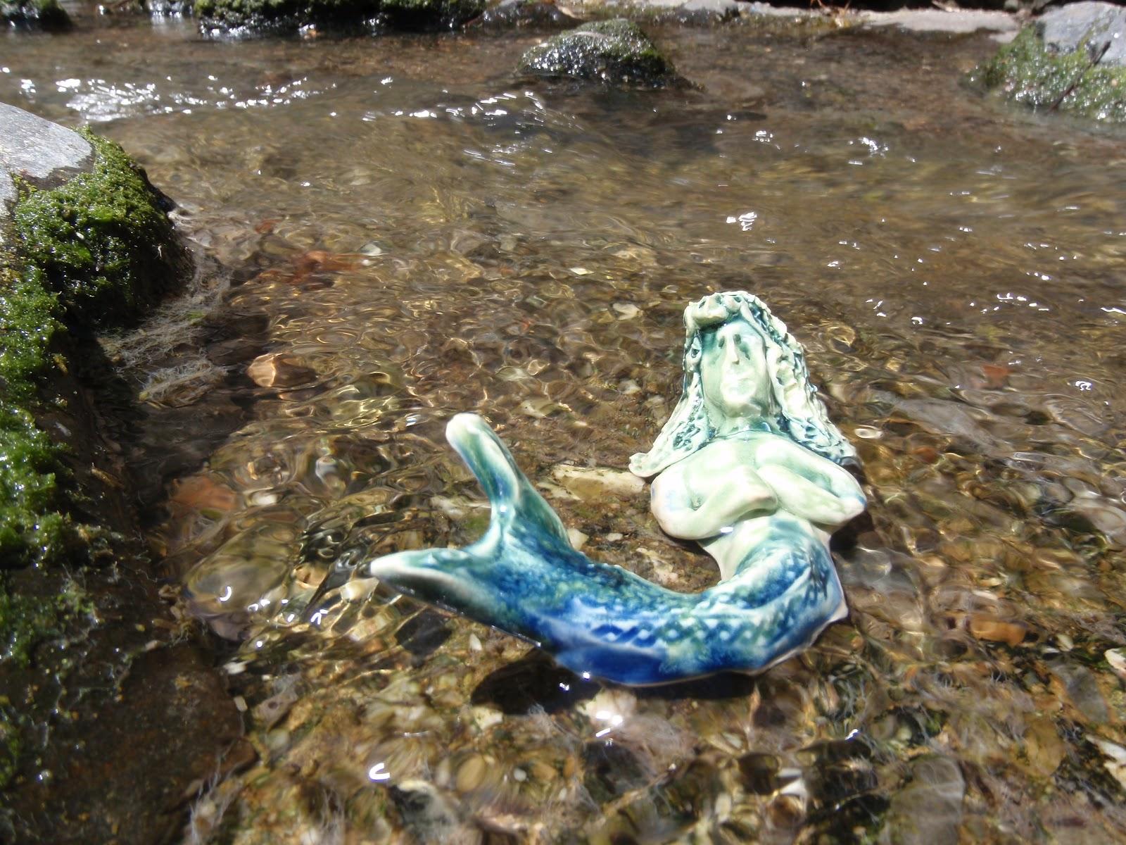Are mermaids real 5 real cases of mermaid sightings - Mermaid Sighting June 2012