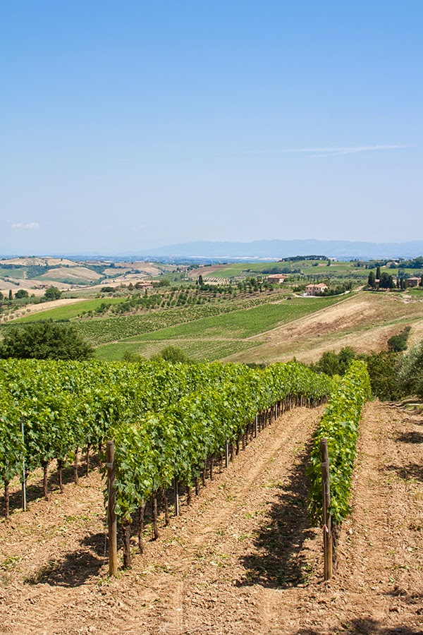 montepulciano blog tour