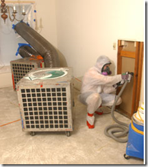 Mayo 2014 eliminar chinches de cama plagas de insectos for Como eliminar chinches de cama