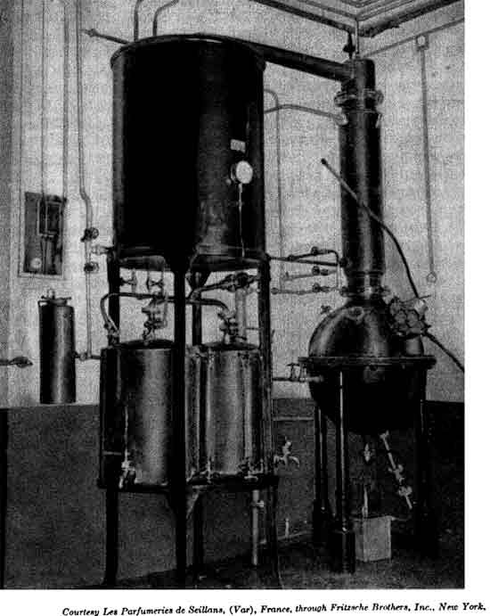 Vacuum still for the concentration of the alcoholic washings in the preparation  of flower oil absolutes