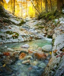 Sebuah sungai yang segar di dalam sungai tersebut mempunyai batu bata yang cantik & pemandangan yang selesa