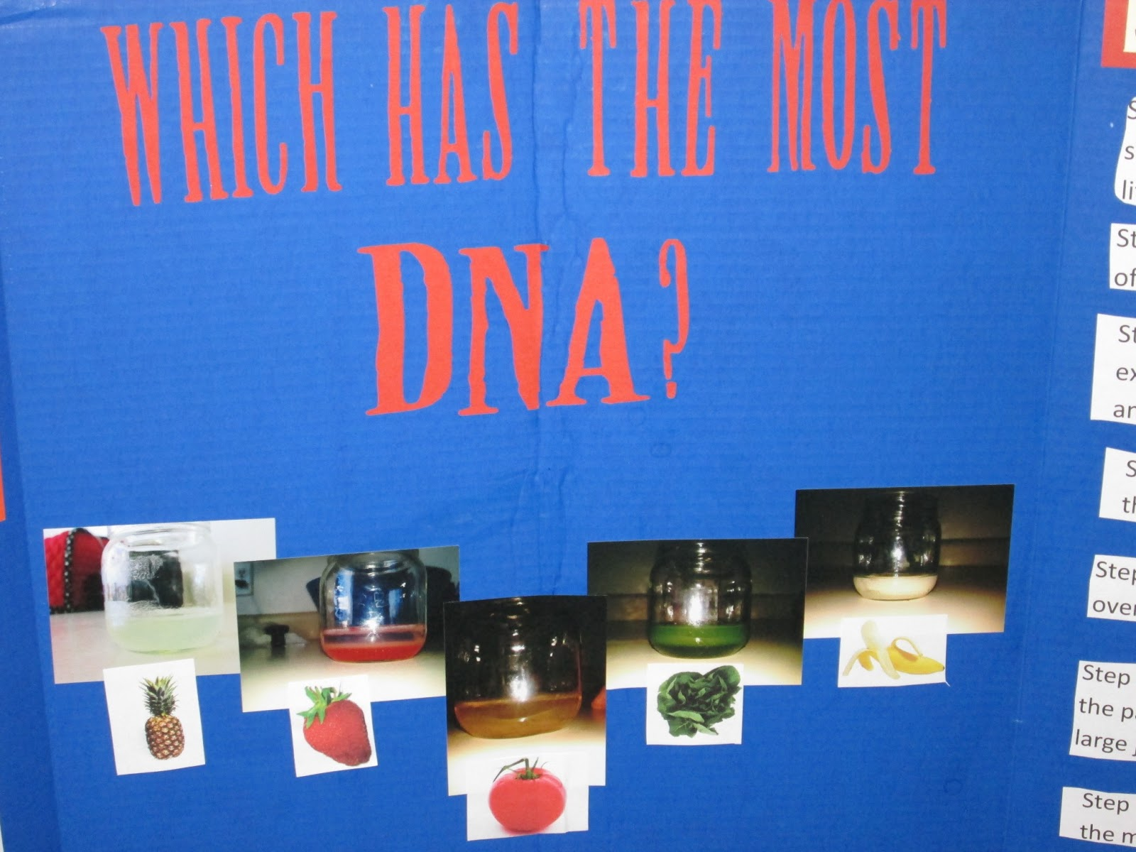 dna science fair projects Advertisements: do you want to create an amazing science fair project on dna fingerprinting you are in the right place read the below given article to get a complete idea on dna fingerprinting: 1.