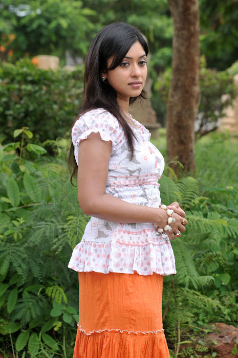 payal gosh , payal gosh hot photoshoot