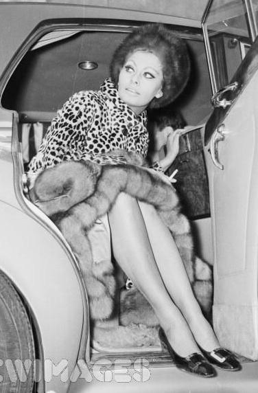 Sophia Loren Love Leop...