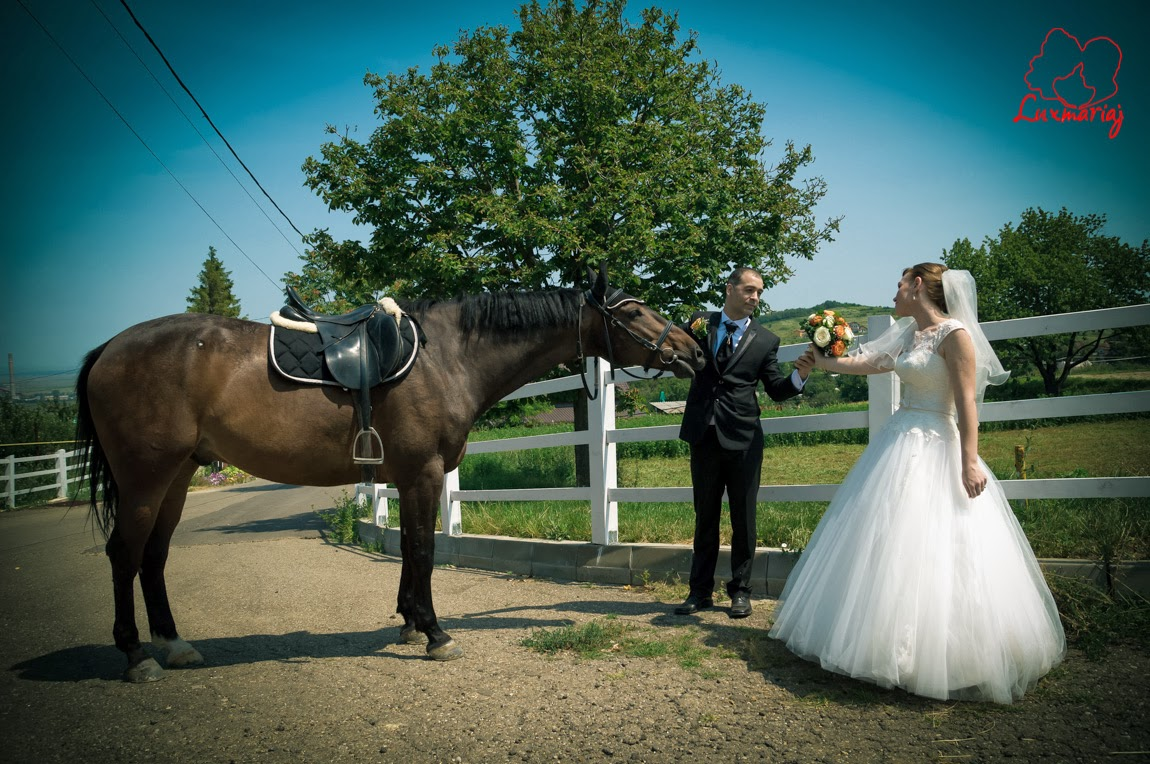 Fotograf nunta Iasi 3