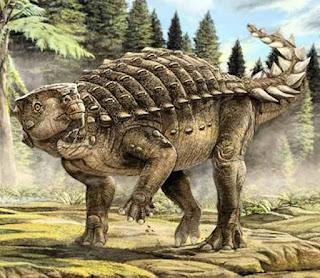 kunbarrasaurus kunbarrasaurus ieversi dinosaus ankylosaur