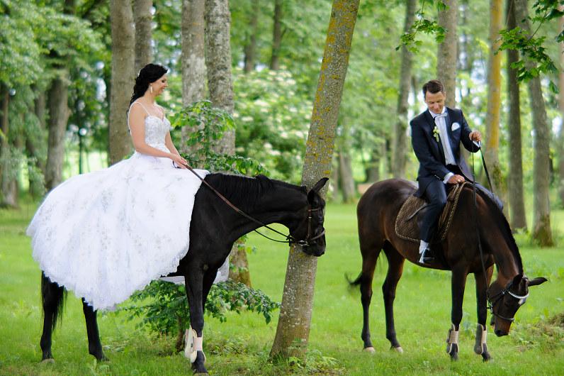pasakiška vestuvinė nuotrauka su žirgais gamtoje