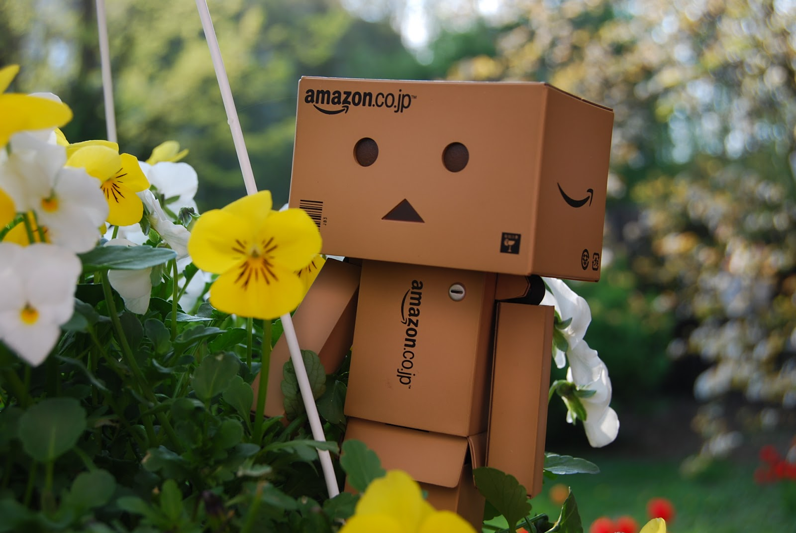 danbo fan ich liebe blumen. Black Bedroom Furniture Sets. Home Design Ideas