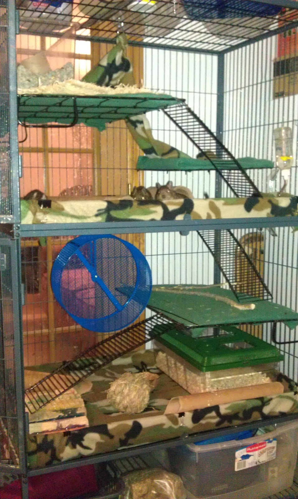 So it goes april 2013 for Awesome rabbit hutches