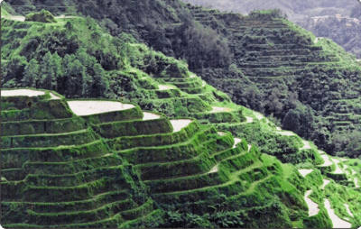 Banaue Rice Terraces Philippines