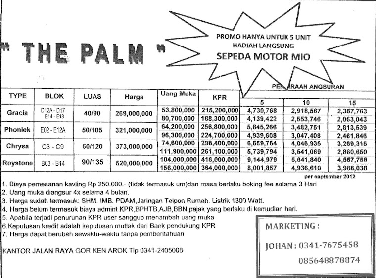THE PALM MARKETING