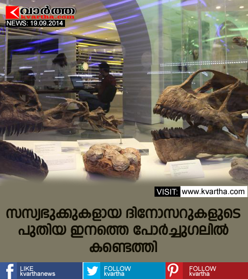 New species of dinosaur found in Torres Vedras, Portugal's, London, Researchers, University,