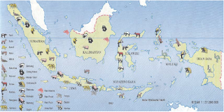 Peta persebaran fauna di Indonesia (Sumber: Atlas Indonesia, Dunia & Budaya, Depdikbud)