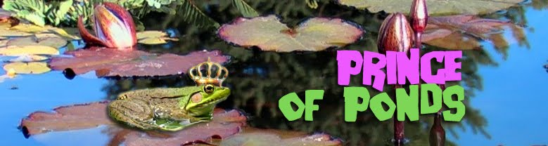 Prince of Ponds