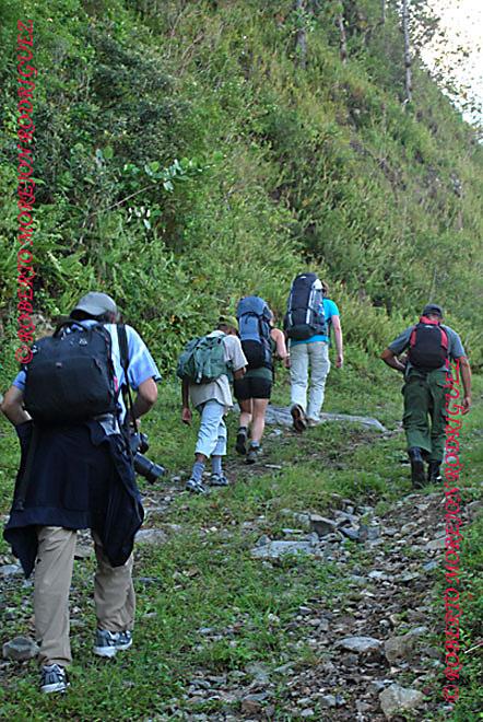 Personas caminando en la Sierra Maestra en la provincia Granma, camino al Pico Turquino