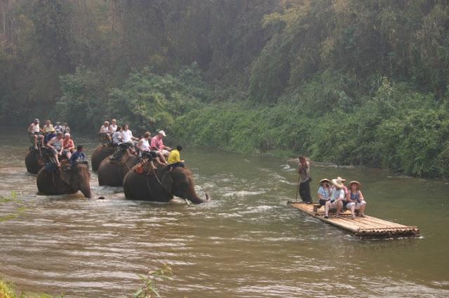 Bamboo Elephant3