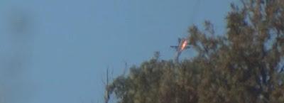 Turquia derruba avião militar russo