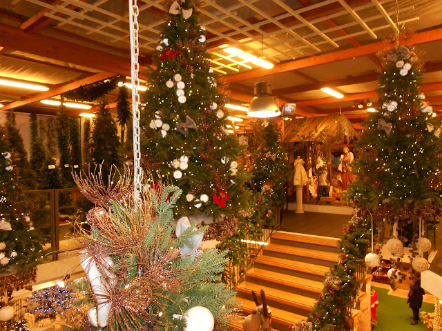 La Casa Di Babbo Natale Di Orio Al Serio Trippando