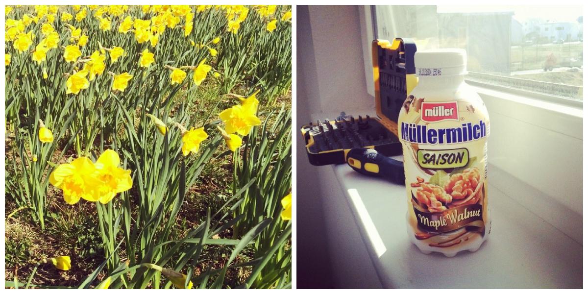 Frühling und Müller Milch