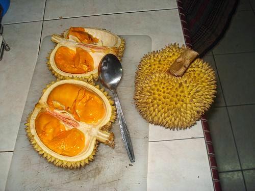 Pekawai (Durio kutejensis)