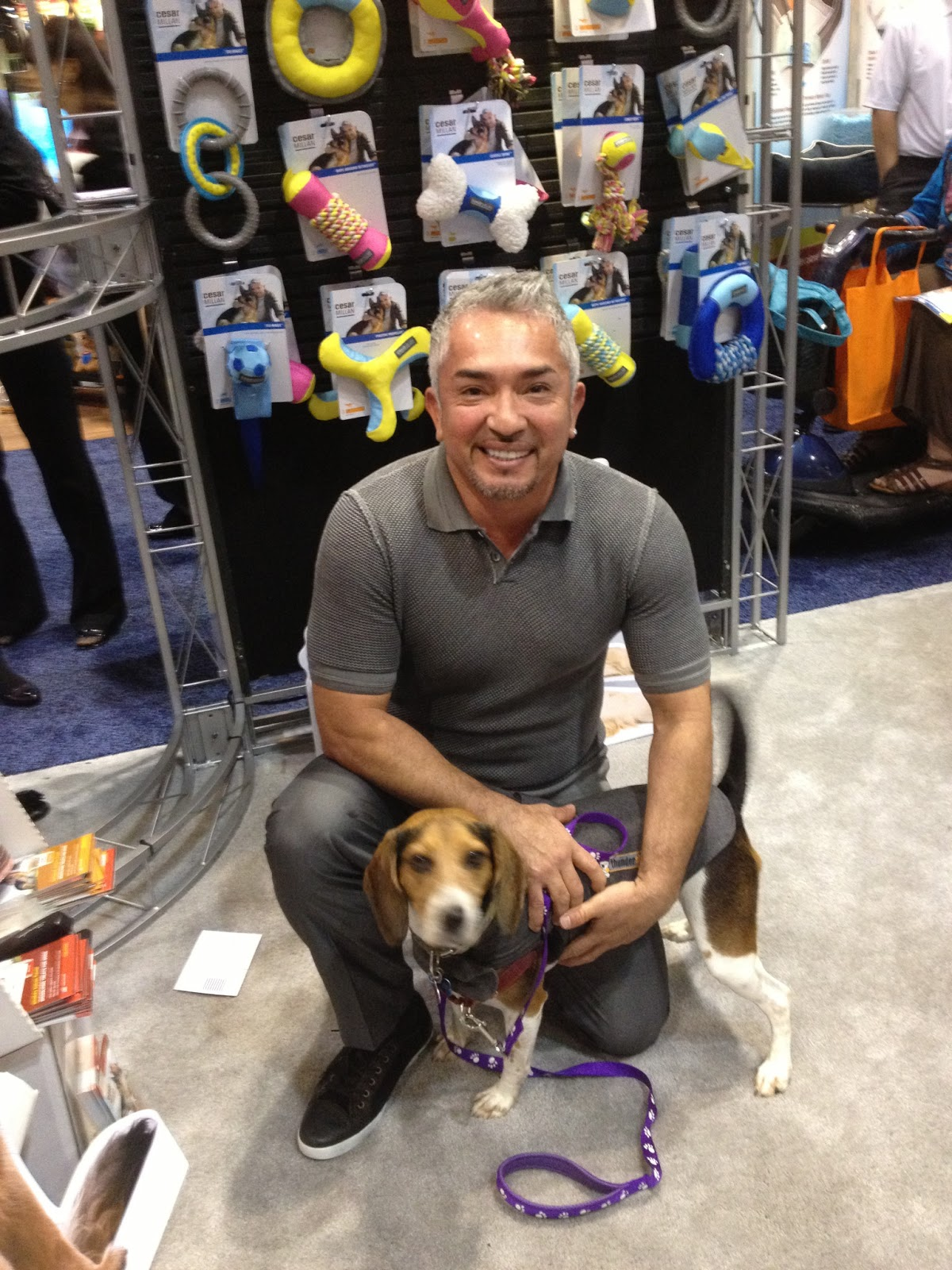 Life With Beagle: Global Pet Expo Day 2: Lulu goes to the expo