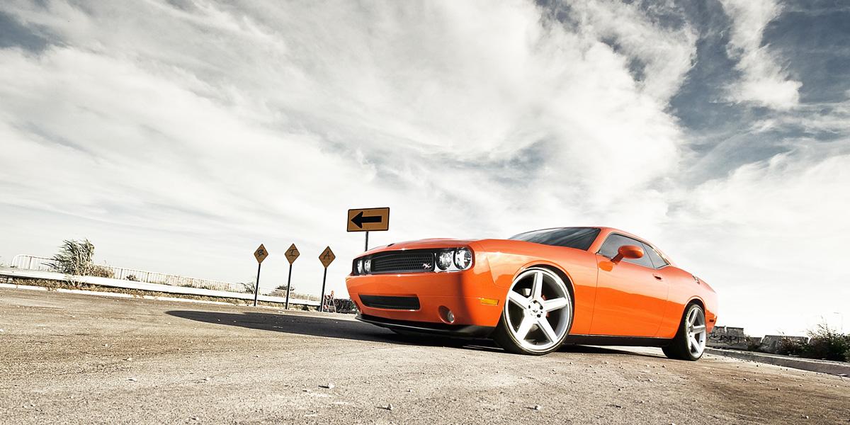 Orange Cat 300+ Muhteşem HD Twitter Kapak Fotoğrafları