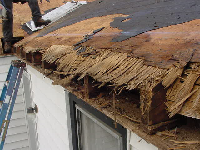 Deck Rot Repaired, Just Needs Fascia