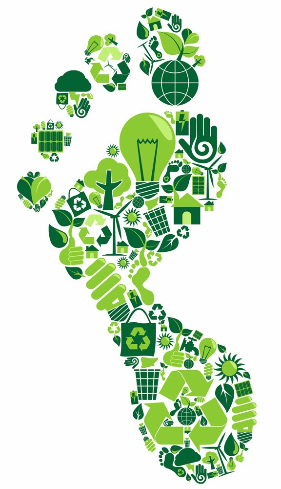 National home services green home blog what is your carbon footprint our daily activities such as driving back and forth to work using heat and the consumption of food and goods causes many polluting gases to be emitted pronofoot35fo Images