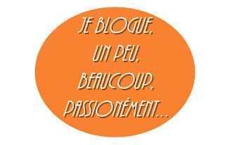 http://lulabouquine.blogspot.fr/2015/08/tag-je-blogue-un-peu-beaucoup.html