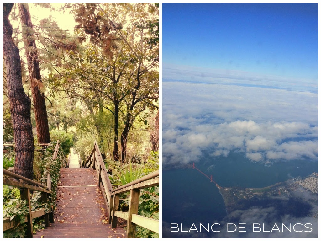 San Francisco collage, Telegraph Hill & Golden gate - www.blancdeblacs.fi