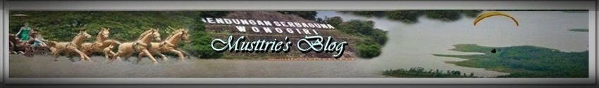 Musttrie's Blog