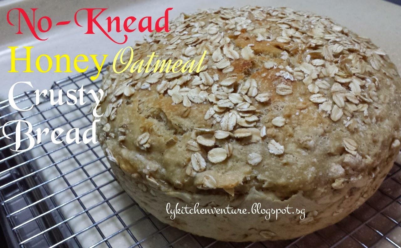 No Knead Honey Oatmeal Crusty Bread