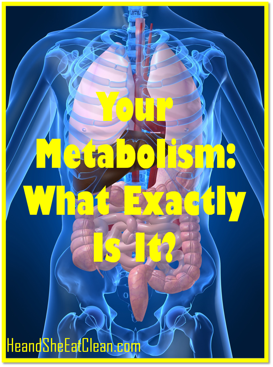 clean eat education your metabolism what exactly is
