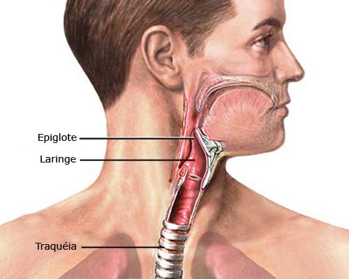 Câncer de laringe: Sintomas e tratamentos