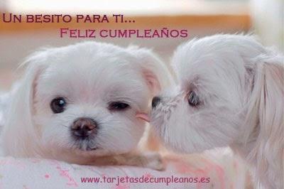 perritos feliz cumpleaños